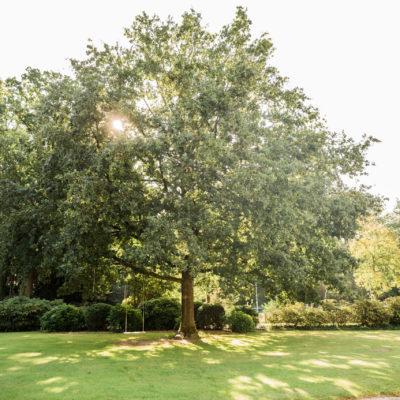 Rasenrondell zur Nutzung bei Trauungen